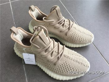 adidas-yezzy-boost-350-1486523-i